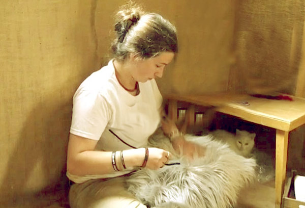 Image of Caption: Birdy Brown's making a pillow from cats' fur